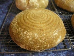 A whole wheat boule